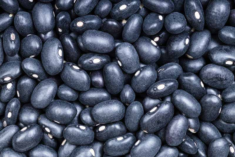 Use Soybeans instead of black beans