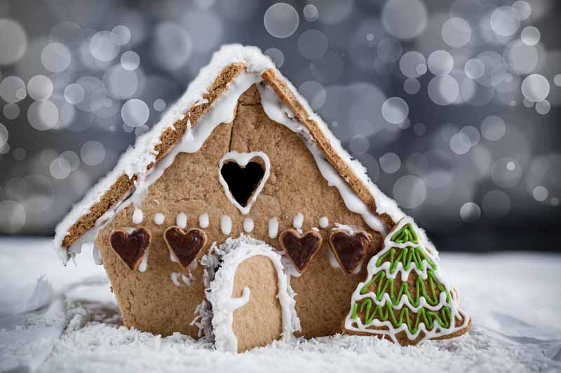 Do YOU Eat Gingerbread HOUSES