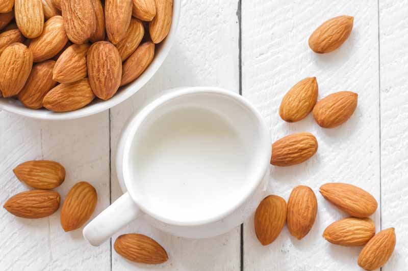 Use Almond Milk To Make Instant Pudding